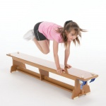 The Eurobench Wooden Gym Bench