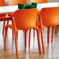 School Dining Chairs