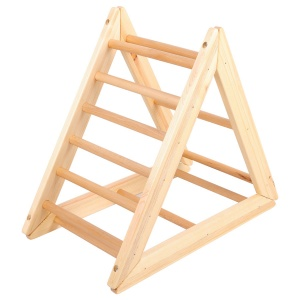 Little Gym Triangle Ladder