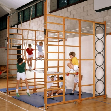 School Gym Fixed Double Climbing Frame