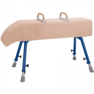 School Gym Sloping Neck Vaulting Horse