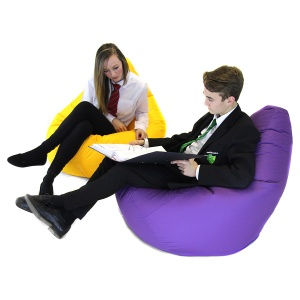 Secondary ''Bookworm'' Bean Bag