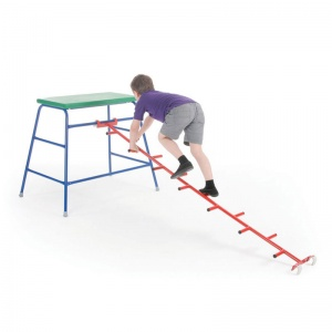 School Gym Linking Cat Ladder 2.13m