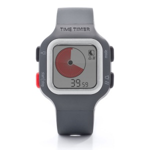 Time Timer® Plus Adult Watch