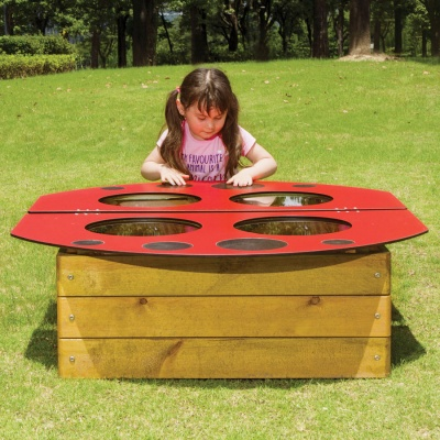 Children's Outdoor Ladybird Flower Bed
