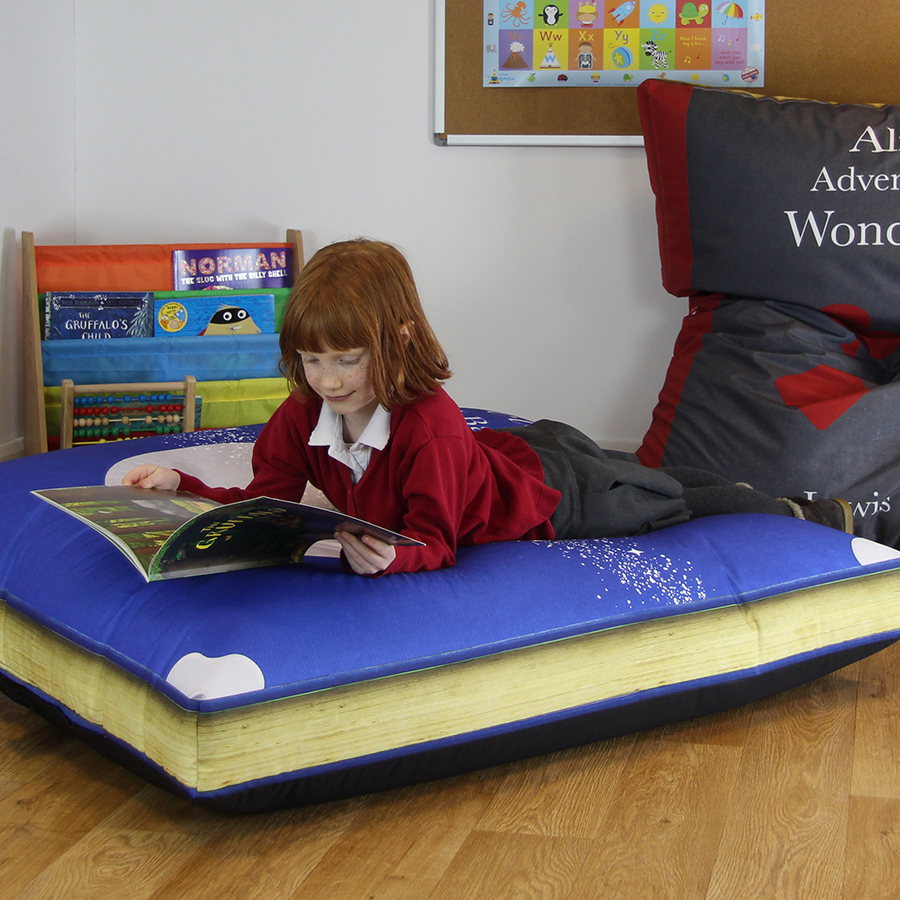 Primary Classic Book Bean Bag Sets